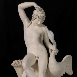 Youth with Swan