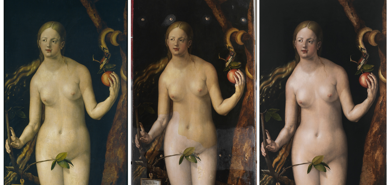 Special Display: Adam and Eve, by Dürer, following their restoration
