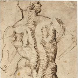 Desnudo masculino / Desnudo masculino de frente