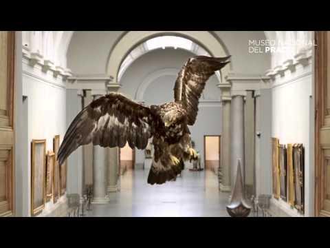 Historias Naturales. Un proyecto de Miguel Ángel Blanco