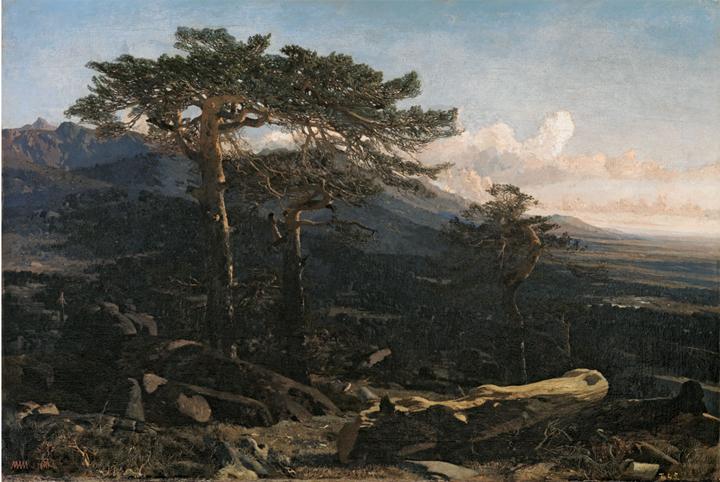 Los inicios como paisajista (1854-1861)